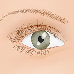 Почему часто дергается глаз