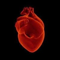 Инфаркт миокарда причины возникновения признаки первая помощь